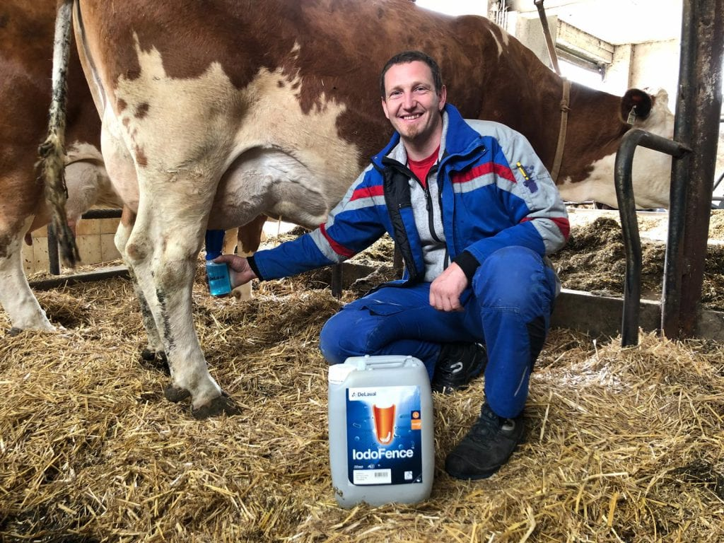 Servicetechniker für Melktechnik im Stall mit Kuh
